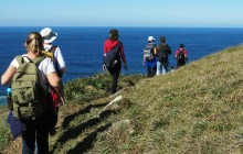 Lagoinha do Leste Trail (Trekking Tour)