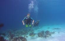 Drift Diver Specialty - 2 dives