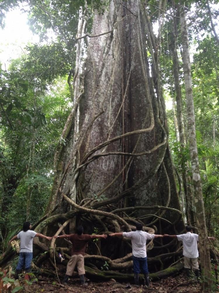 Iquitos City Tour