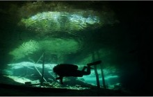 Cenotes: Dream Gate 2 dives