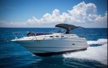 28' Regal Yacht Rental - In-Ha Snorkel & La Bocana
