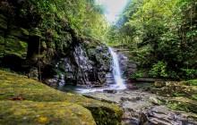 Hue Bach Ma National Park