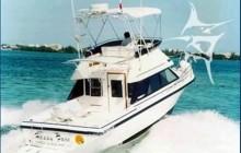 Phoenix 34' Fishing Yacht Rental