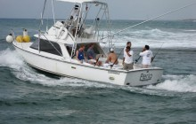 Fishing Yachts - Big Fes 48 feet, Viking