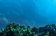 Blowing Rock Diving