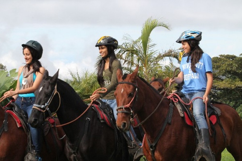 Monteverde Horseback Riding Mountain & Farm Views