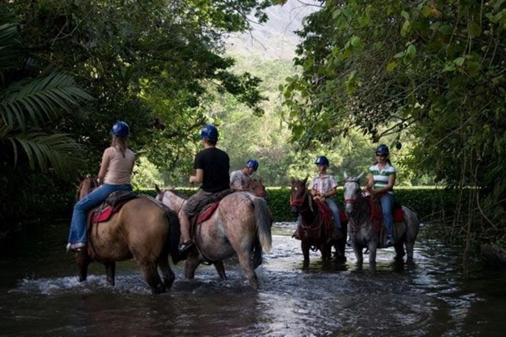 Horseback Ride to Eden Waterfall