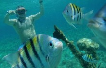 Snorkeling At Booby Cay Island