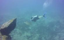 2 Tank Scuba Dive - French Side