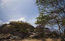 Discover Aruba Tour