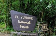 El Yunke Rainforest Tour