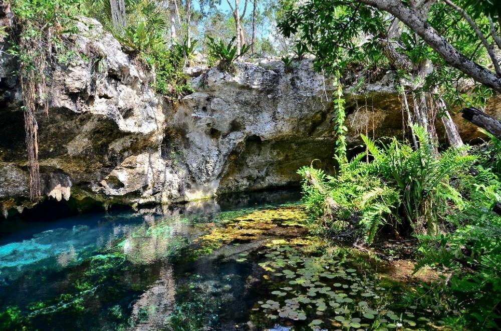 Cenotes Snorkel