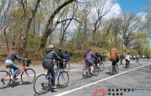 Private Central Park Bike Tour