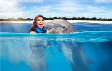 Dolphin Encounter: Punta Cana
