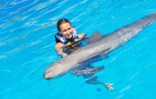 Dolphin Swim Adventure: Puerto Vallarta