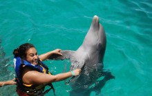 Dolphin Encounter: Isla Mujeres