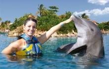 Dolphin Swim Adventure: Dreams Puerto Aventuras