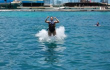Dolphin Royal Swim + Royal Garrafon VIP: Isla Mujeres