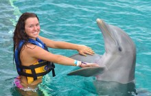 Dolphin Swim Adventure + Royal Garrafon