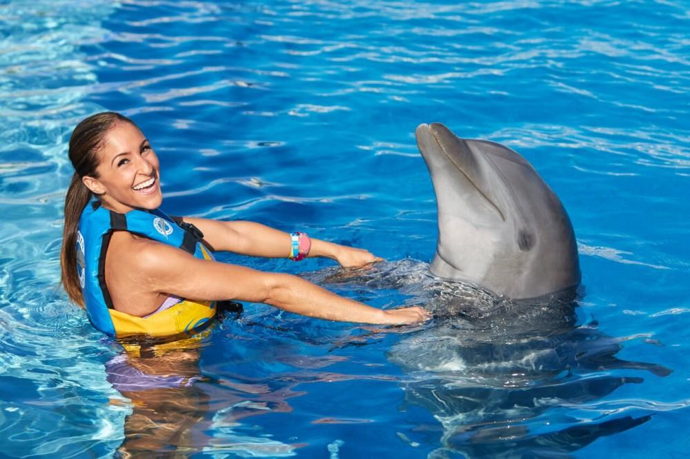 Dolphin Royal Swim: Tulum Akumal