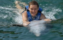 Dolphin Swim Adventure: Montego Bay