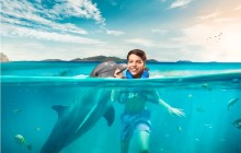 Dolphin Swim and Ride: Los Cabos