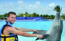 Dolphin Adventures With Dolphin Discovery