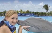 Dolphin Royal Swim: Playa del Carmen