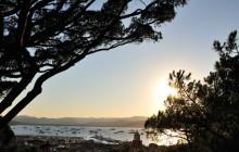 Saint Tropez & Port Grimaud Sightseeing Tour