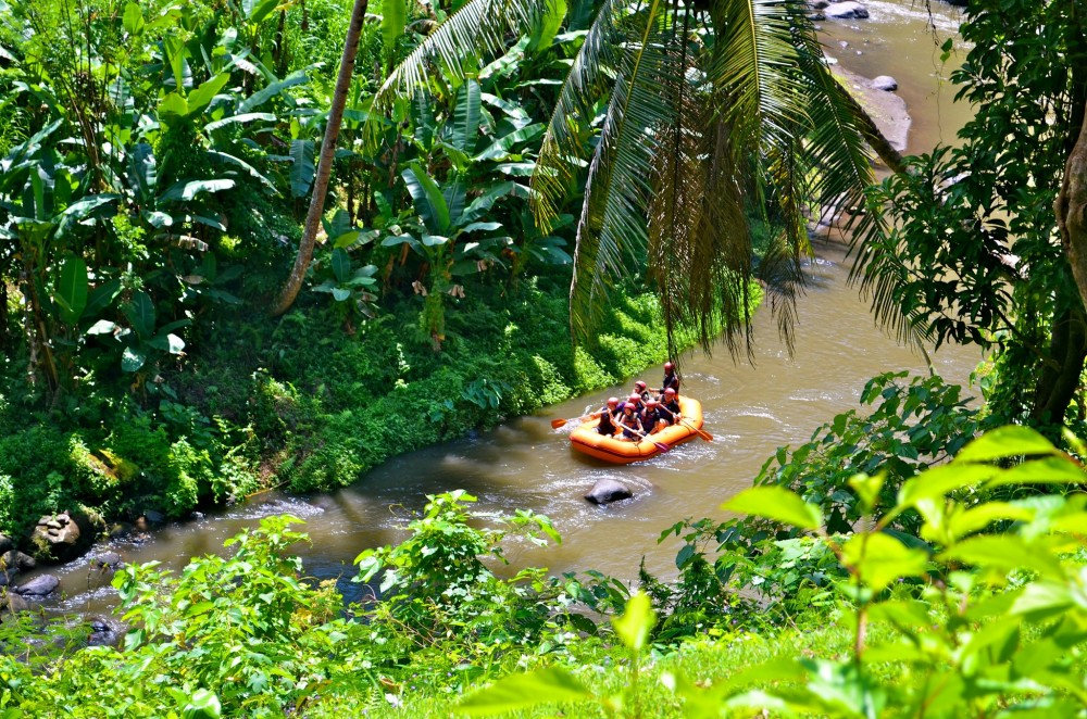 White water rafting + Ubud Sightseeing Combo Tour