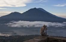 Rio Bali Tours