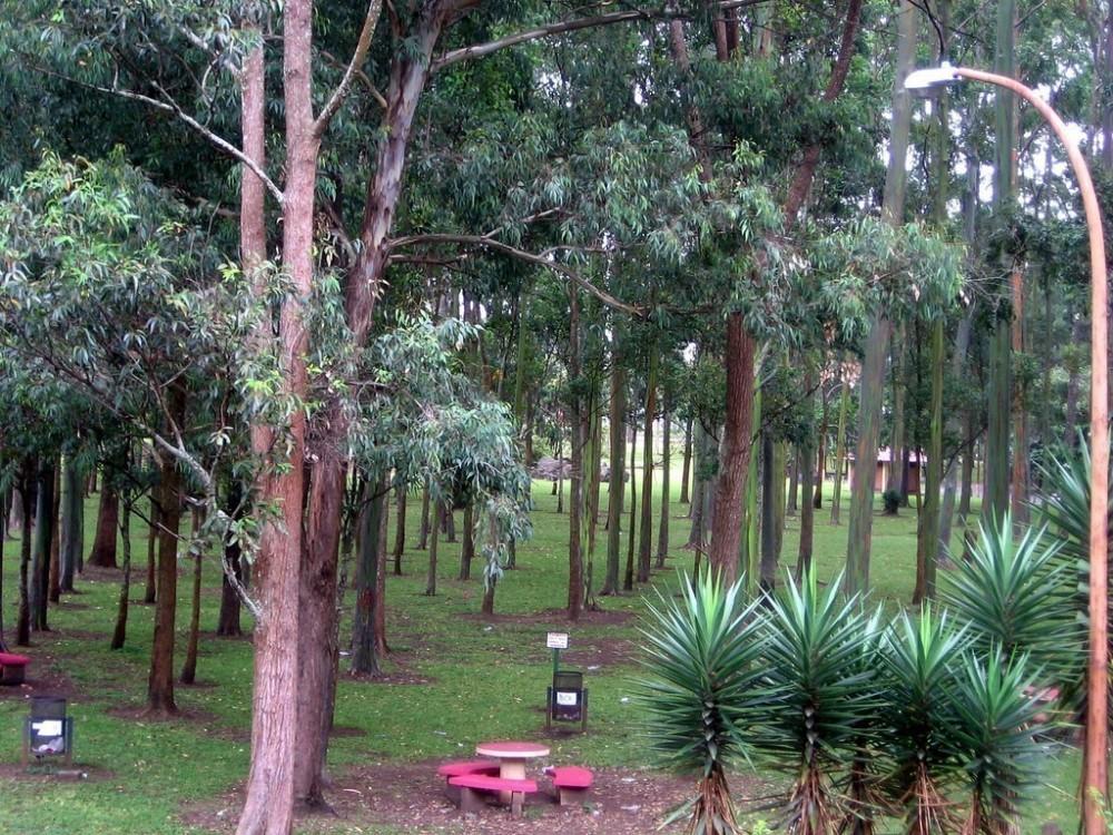 Parque La Sabana
