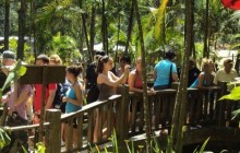 "'Las Pozas"" Waterfall Park Tour"