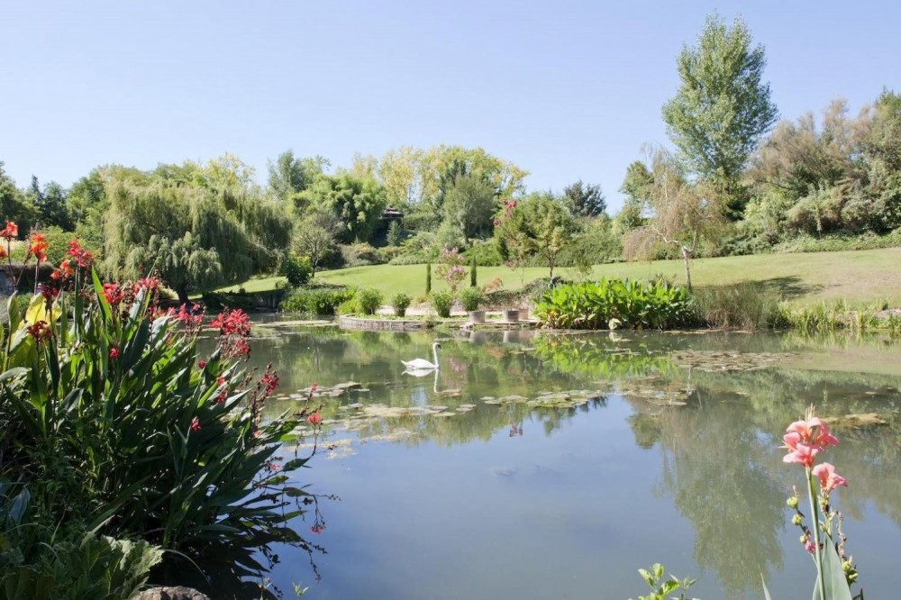 Guided Tour to Giverny - Claude Monet's Home and Gardens