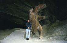 Cueva Del Milodón Natural Monument
