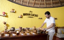 Flavors & Traditions Of Mexico