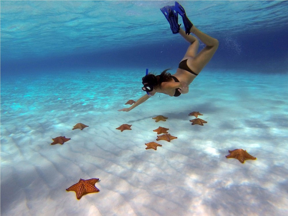 Cozumel: Coral Reefs Snorkeling & Playa Mia - Cozumel | Project Expedition