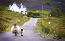 Isle Of Skye Day Tour from Inverness