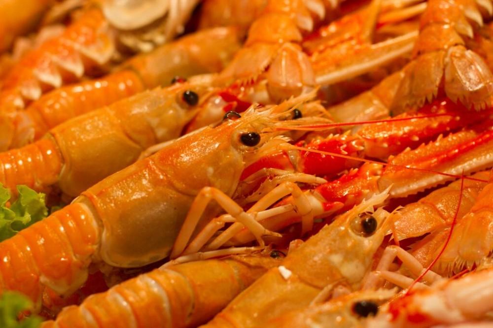 Venice Food Tour: Rialto Market & Cicchetti Tasting