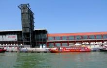 City Sightseeing Hop On Hop Off Venice + Leonardo da Vinci Museum