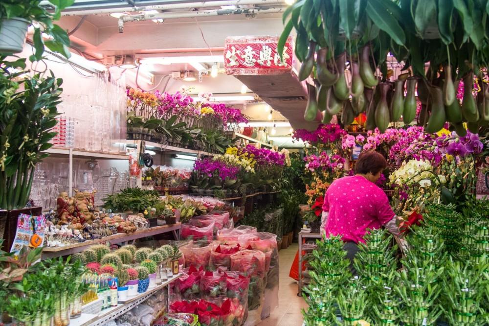 Kowloon Food Safari