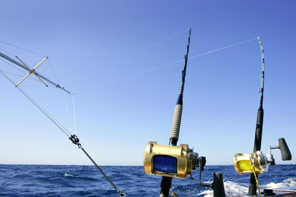 Full Day Fishing Charter