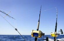 1/2 Day Charter Fishing