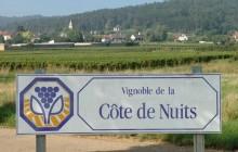 Small Group Côte de Nuits Burgundy Wine Tour