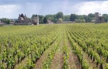 Private Cote de Beaune + Cote de Nuits Burgundy 2 Day Tour