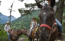 One Hour Horseback Ride - 10:00 AM