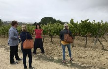 Early Entrance Montserrat & Gourmet Cava Small Group Tour