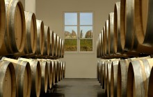 Cognac Private Wine Tour from Bordeaux