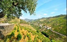 Douro River Upstream Cruise to Regua from Porto Weekdays