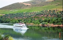 Douro River Upstream Cruise to Regua from Porto Weekends